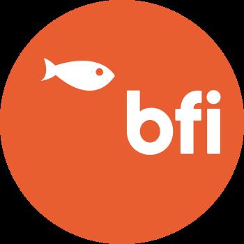 Big Fish Internet Ltd t/a BFI® (formerly BF Internet)